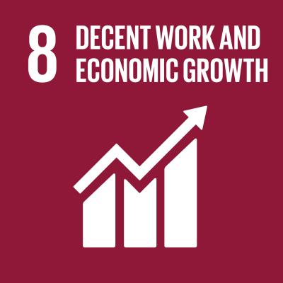SDG, Decent work and economic growth